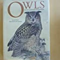Owls of the Northern Hemisphere
