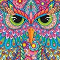 Hello Angel Lined Journal Owl (Quiet Fox Designs) Beautifully Crafted Hardcover Diary for Journaling and Recording Your Dreams; 128 Pages of Lined Writing Space