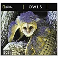 National Geographic Owls 2021 Wall Calendar