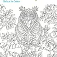 OWL COLORING BOOK Owl Adult Coloring Book Owls