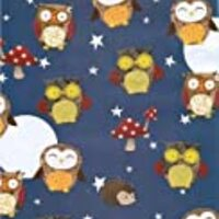 Owl Rolled Gift Wrapping Paper 2 Sheets of 20 in x 27.5 in
