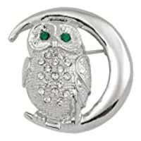 Owl On The Moon Silver Jeweled Pin