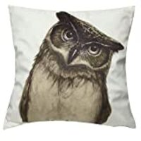 LAZAMYASA Animal Fashion Abstract Pug Dog Cushion Cover Case Pillow Custom Zippered Square Pillowcase 18x18 (one Side),Owl