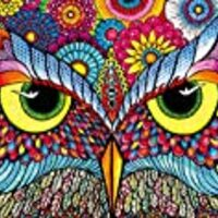 Buffalo Games Owl Eyes Jigsaw Puzzle from the Vivid Collection (1000 Piece)