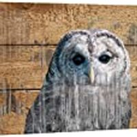 wall26 - Double Exposure Rustic Canvas Wall Art - An Owl - Giclee Print Modern Wall Decor | Stretched Gallery Wrap Ready to Hang Home Decoration - 16x24 inches