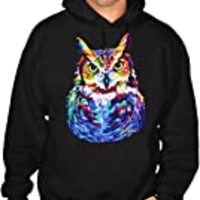 Men's Black Light Neon Owl Painting Black Pullover Hoodie Sweater 3X-Large Black