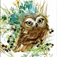 "7Dots Art. Cute Baby Animals. Watercolor Art Print, Poster 8""x10"" on Fine Art Thick Watercolor (Aquarelle) Paper for Children's Room, Bedroom, playroom, Bathroom. (Baby Owl)"
