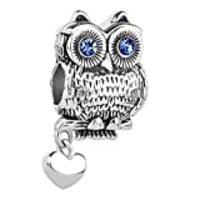 LilyJewelry Wise as Owl with Heart Animal Lovers Charm Bead for Bracelet (Blue)
