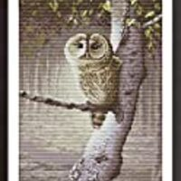 Cross Stitch Kits, Owl Animals Awesocrafts Easy Patterns Cross Stitching Embroidery Kit Supplies Christmas Gifts, Stamped or Counted (Owl, Counted)