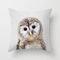 Baby Owl - Colorful pillow