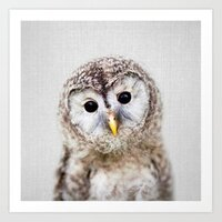 Baby Owl - Colorful print
