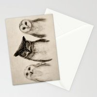 The Owl's 3 Stationary Cards