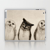 The Owl's 3 laptop skin